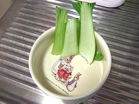 りゅうぴょんお野菜